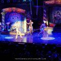 cher-philips-arena-atlanta-2014-05-12-P1020301.JPG